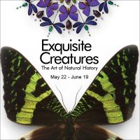 Exquisite Creatures: The Art of Natural History