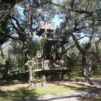 Science Eye Safari Camp