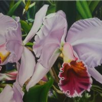 Business for the Arts of Broward Artist Encounter Series featuring Maria Aguerrevere