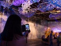 ArtsUP! Gallery Night - Art Walk